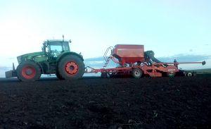На полях «Бучачагрохлібпрому» посів зернових культур – у розпалі