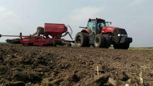На полях «Бучачагрохлібпрому» стартувала посівна озимого ріпаку