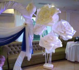 Вишукані квіти-гіганти заввишки з людину створює тернополянка